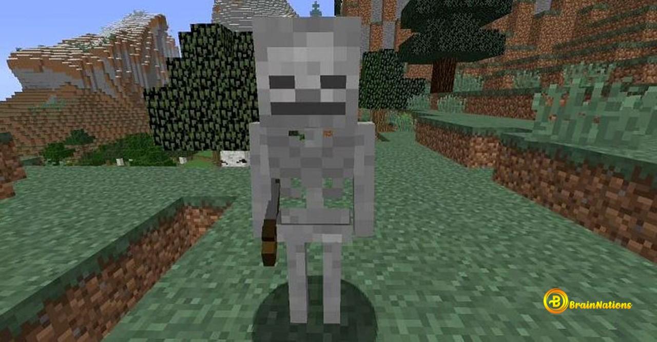 Skeleton minecraft